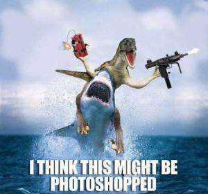 scary-shark